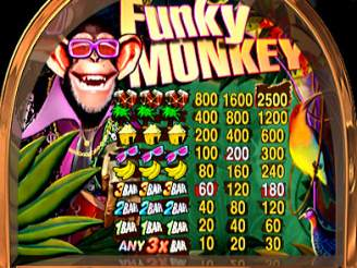 Play Funky Monkey Slots Online