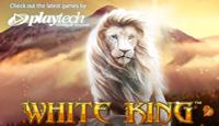 White King Slots